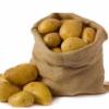 安丘陆地土豆即将上市  大量供应土豆(荷兰十五)